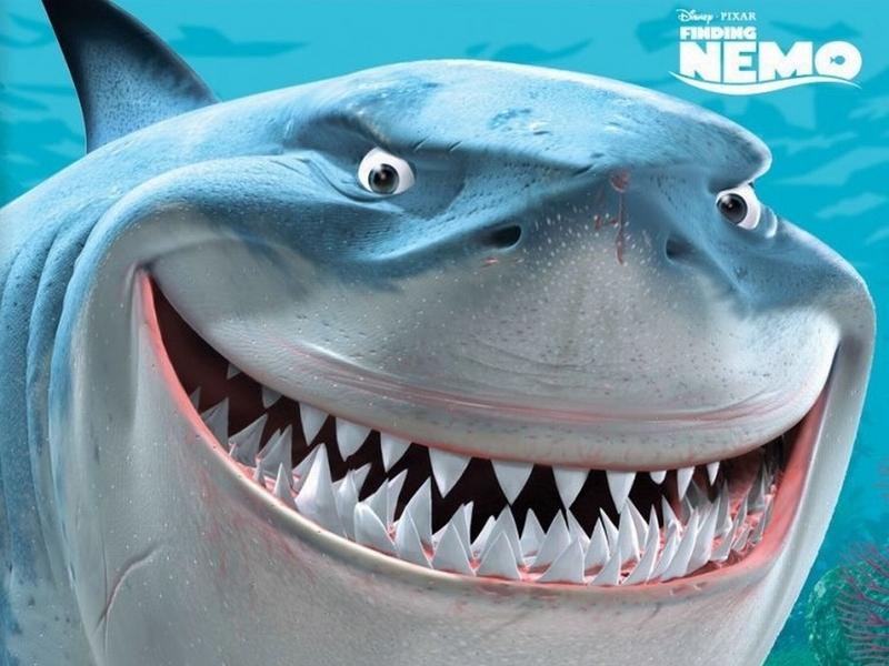 Finding-Nemo-Bruce-the-Shark-Wallpaper-finding-nemo-6615914-800-600